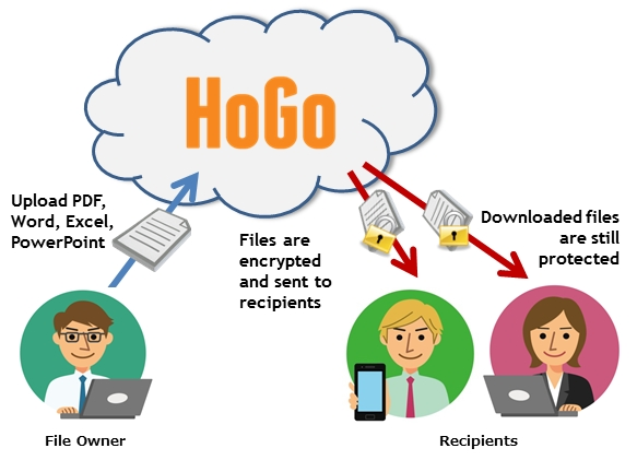 HoGo Architecture Diagram